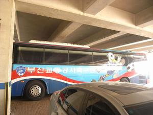 Busan_bus