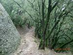 Montserrat22