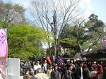 Jindai_festa02