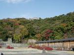 matsuyama38